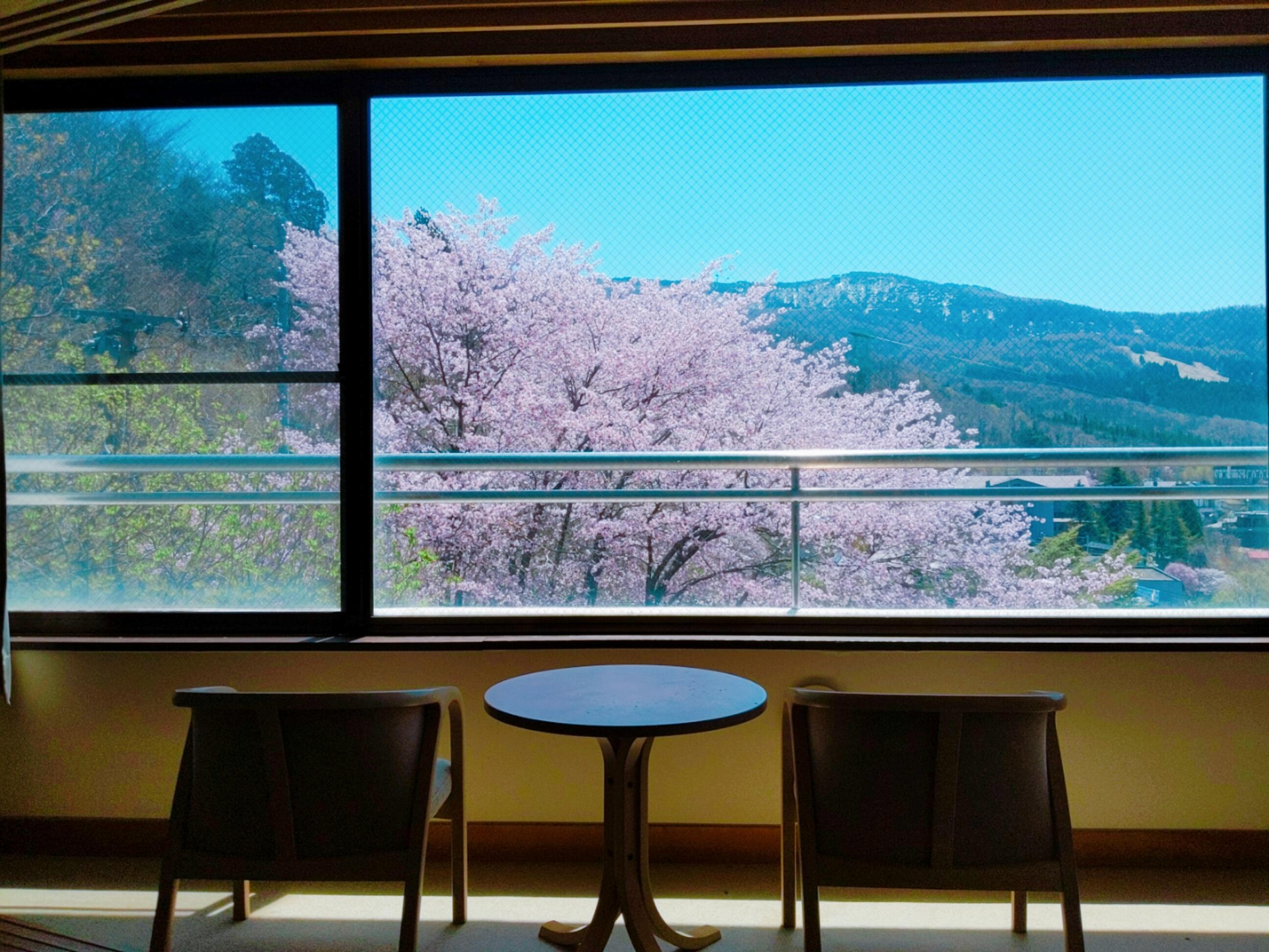 客室からの大山桜大山桜